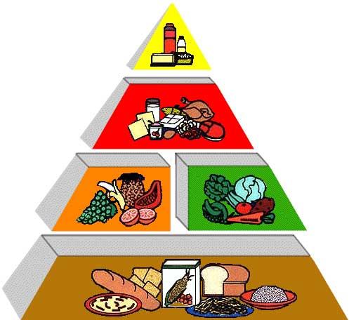 گروه های مواد غذایی