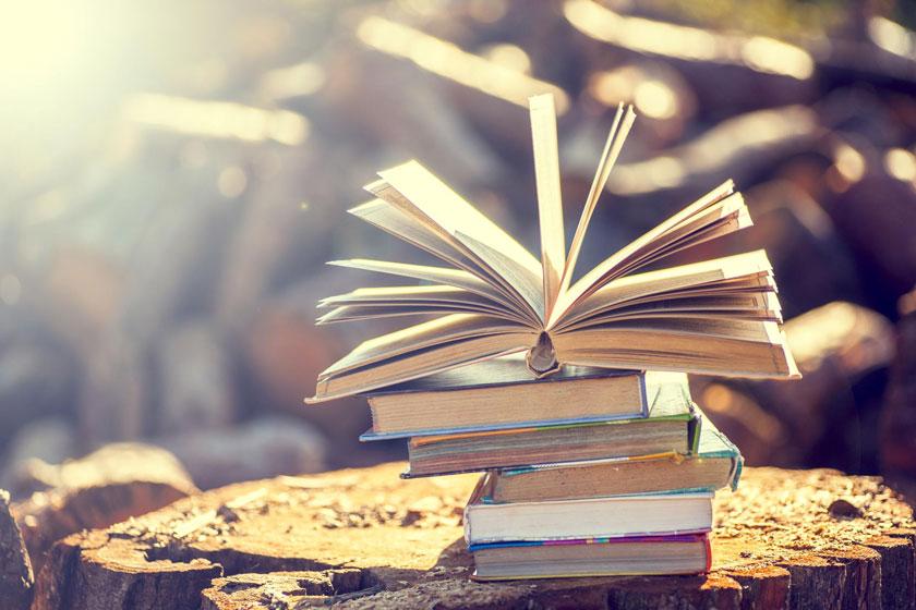 ساختار اصلی یک مقاله ادبی