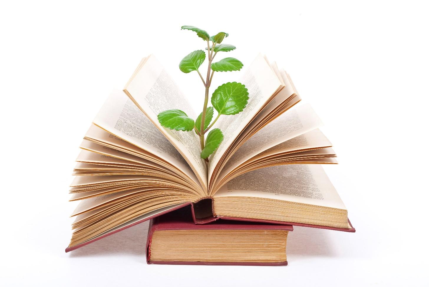 نوشتن خبرنامه با کاغذهای بازیافتی